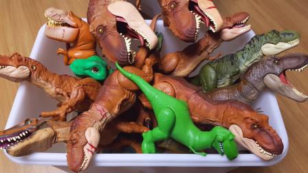 霸王龙三角龙恐龙模型玩具展示