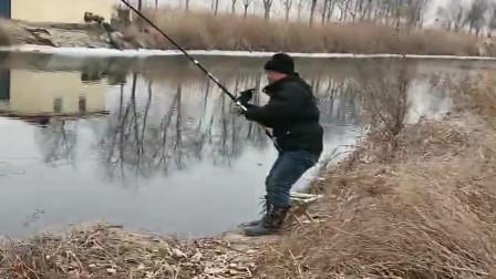 农村大叔又钓到大货了,看看这大弯弓多漂亮,钓鱼人的最爱!