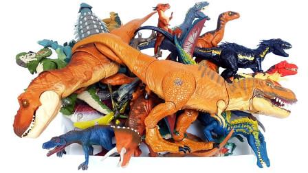 远古生物彩色的霸王龙恐龙玩具介绍