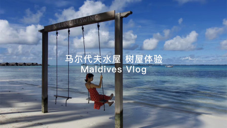 「马尔代夫VLOG」马尔代夫水屋,树屋低成本旅行体验