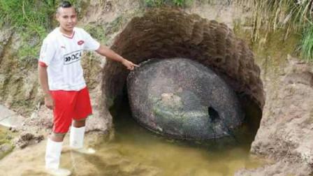 男子在河边散步时,无意发现神秘洞穴,走近一看,吓得连忙报警
