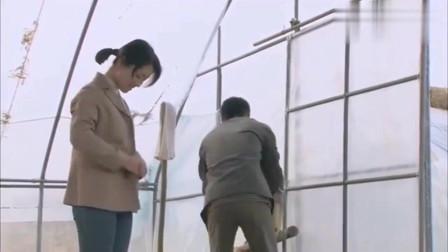 翠兰的爱情:光棍去大棚找寡妇,岂料张口就让她脱衣服,真是厉害了!