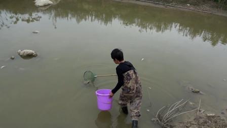 小伙承包的鱼塘一夜间死了那么多鱼,都不知道怎么回事,亏大了