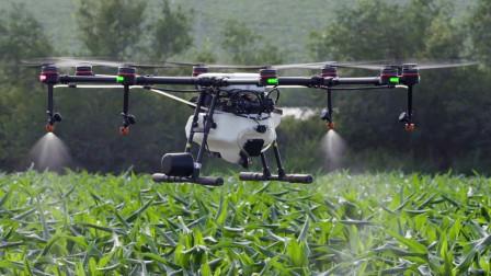 """东北农民发明""""科技无人机"""",科技结合干农活,一天赚三万块"""
