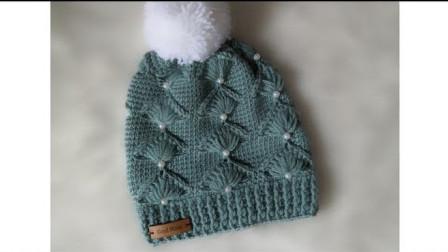 漂亮的帽子,钩针钩织,花样精致,款式大方,喜欢钩针的可以一试