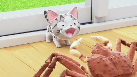 甜甜私房猫:猫咪快跑呀,是一个可怕的敌人