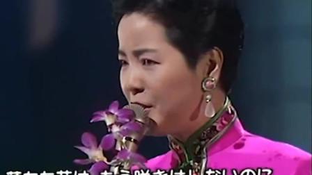 邓丽君一首《雨夜花》,无数知名歌手翻唱的经典,不愧是歌后!