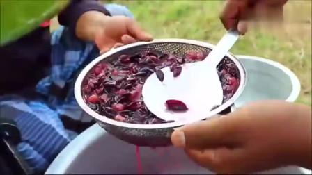 印度大户人家,拿来50斤葡萄,看看这吃法,感觉太落后了