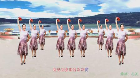 广场舞《梦中的兰花花》  舞蹈:志英   制作:梦中的流星