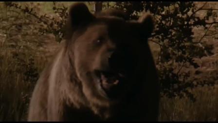 小伙不顾同伴阻拦熊宝宝,不料却引出了公熊的报复,真是活该