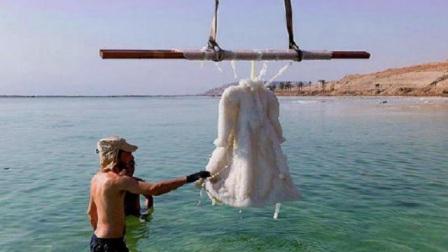 国外艺术家把裙子放在死海中浸泡,3年后变这样?价值竟达150万!
