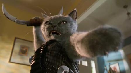 小猫表面温柔可爱,实际上是一个特工杀手,一部搞笑动物电影
