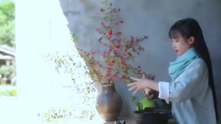 """李子柒:做阿胶固元膏送给""""锅盖"""",网友:混得不如一条狗啊"""