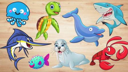 认识旗鱼等8种海洋动物,小马识动物