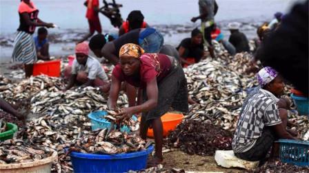 """被非洲人民当成""""垃圾""""的东西,在我国却变成奢侈品,这咋回事?"""