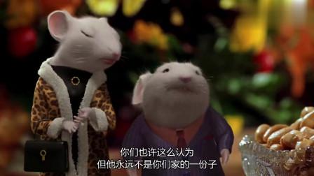 精灵鼠小弟:小老鼠见到亲生父母,可是并不开心