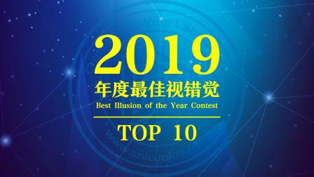 2019年度最佳视错觉第一名:Dual Axis Illusion