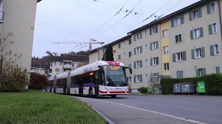 瑞士-卢塞恩的无轨电车 2019年