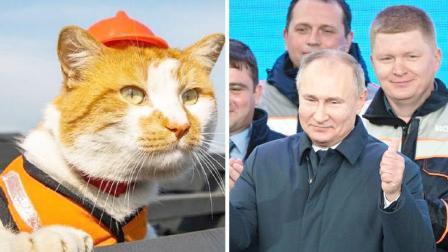 可爱!网红猫咪与普京共同见证克里米亚大桥铁路通车
