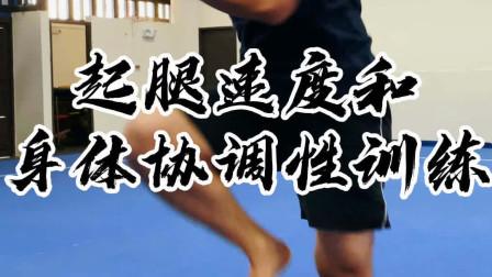 起腿速度和身体协调性训练