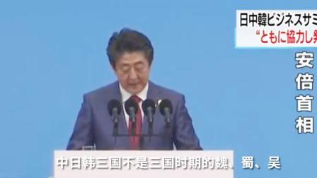 """安倍:中日韩不是相互争斗的""""魏蜀吴"""""""
