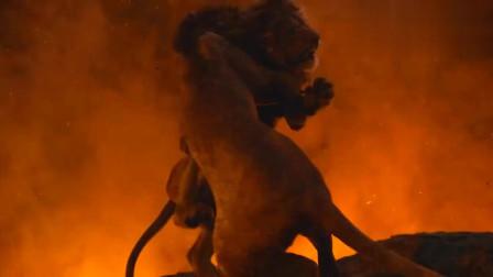 小狮王辛巴弄清老狮王被害,战胜了刀疤