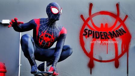 蜘蛛的换装体验,真是帅呆啦!
