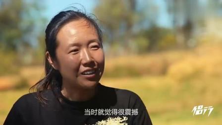 侣行:中国人暗访非洲红木黑市, 不但锯不动, 还