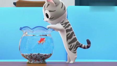 甜甜私房猫:金鱼好可怜,没办法呀
