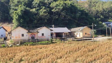 实拍广东河源:大山里发现一个100年的古村,生活环境还像古代一样!