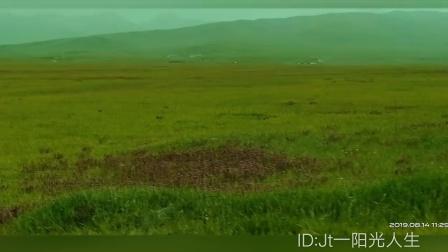 2019新疆旅游@巴音布鲁克草原②