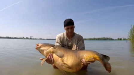 将淡水鱼放进海水中,鱼会怎么样?跟着镜头来看一看!