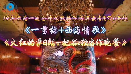19年最后一波全中文热播混搭《一剪梅+西海情歌+火红的萨日朗》车载专用DJ串烧