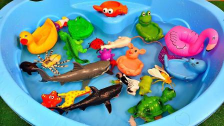 好有趣!你知道恐龙世界里的哪只恐龙是食草类的吗?趣味玩具故事