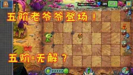 植物大战僵尸:五阶植物老爷爷豌豆,直接喷射出爆裂火焰弹!