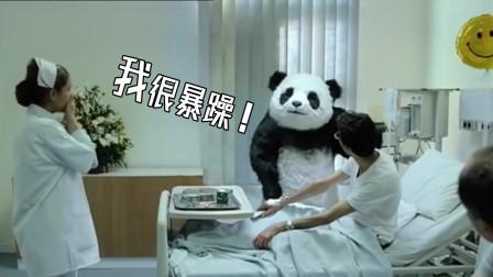 四川方言爆笑:暴躁熊猫在线怼人,输液管都给你扯了,笑得肚儿痛
