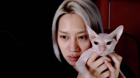 金希澈承认领养雪莉的猫 谈韩庚婚讯:因行程无法参加