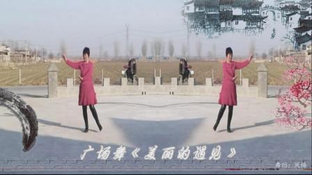 梦中的流星广场舞《美丽的遇见》  舞蹈:凤梅