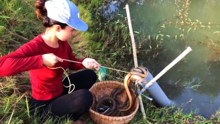 三妹捕鱼,一根PVC管架在野塘里,一刻钟就有收获,太过瘾了!