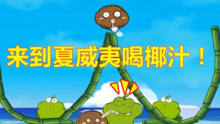 青蛙喝水06:小青蛙们来到夏威夷,要用椰子汁喂饱小青蛙