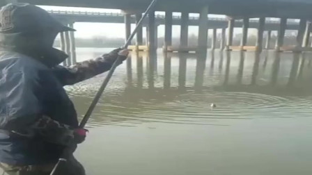 农村大叔来高架桥下钓鱼,这技术厉害了,一看就是一斤多的野生大板鲫!