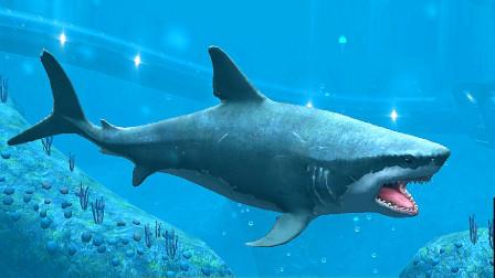 侏罗纪世界进化:乘风破浪任务获得巨齿鲨!