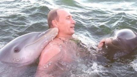 罕见视频曝光!普京访问古巴时与海豚游泳,亲密互动温情满满
