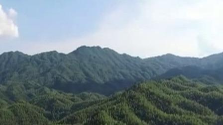 中国2019年造林1.06亿亩 2020年计划1.01亿亩 每日新闻报 20191231 高清版