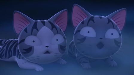 甜甜私房猫:小奇遇到了麻烦,谁来帮帮小奇呢