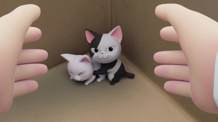 《甜甜私房猫》可奇遇到了好心人,带走了小白白