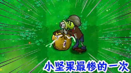 植物大战僵尸欢乐时刻 可怜的坚果,这是小坚果最惨的一次!