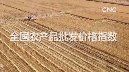 财经小贴士——全国农产品批发价格指数