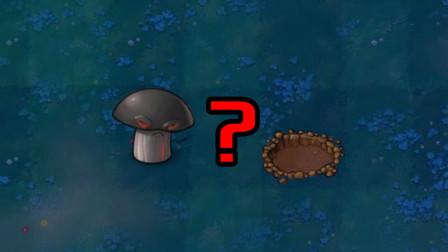 揭秘! 毁灭菇为什么会留下一个弹坑?
