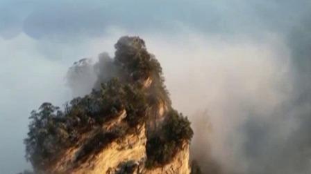 天子山顶银装素裹 景区出现云海奇观 每日新闻报 20200101 高清版